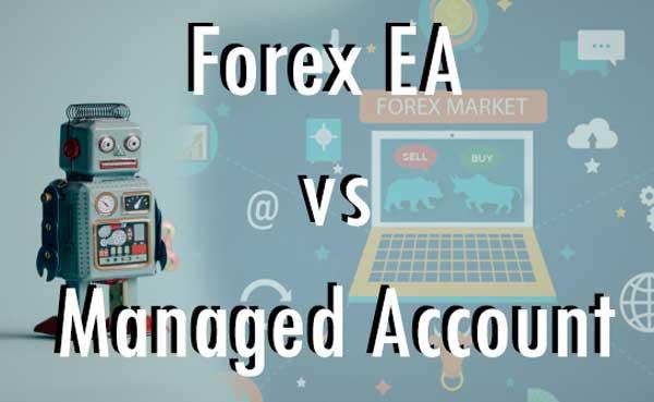 Pilih Robot Forex atau Managed Account